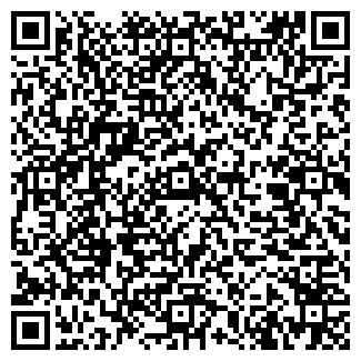 QR-код с контактной информацией организации Гнездо, ООО