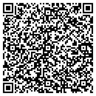QR-код с контактной информацией организации ИП Avip