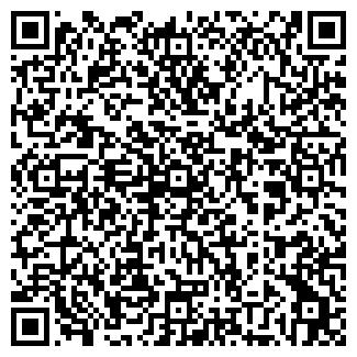 QR-код с контактной информацией организации ИП Айшани