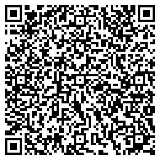 QR-код с контактной информацией организации ИП Ника