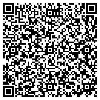 QR-код с контактной информацией организации ИП ИП Руслан