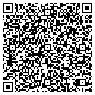 QR-код с контактной информацией организации VS (ВиСИ), ИП