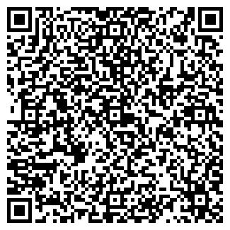 QR-код с контактной информацией организации ИП NEW STYLE