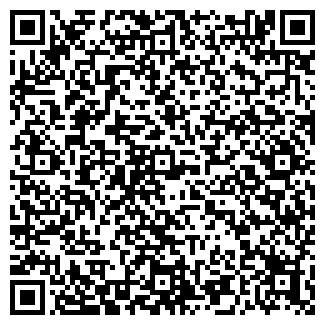 """QR-код с контактной информацией организации ИП """"Васильев"""""""