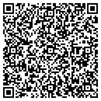 QR-код с контактной информацией организации BaVi