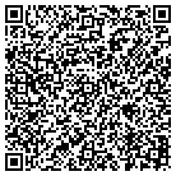 QR-код с контактной информацией организации Свенк (Swank), Компания