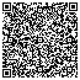 QR-код с контактной информацией организации Ball Studio