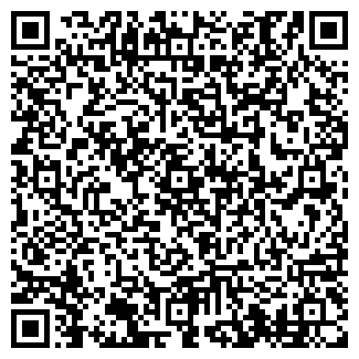 QR-код с контактной информацией организации Субъект предпринимательской деятельности Ремесленник
