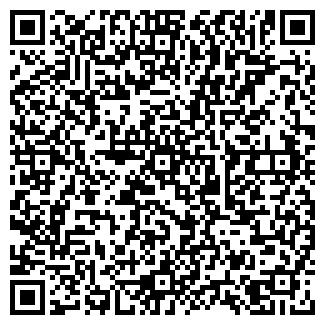 QR-код с контактной информацией организации Субъект предпринимательской деятельности ИП «Ряна»