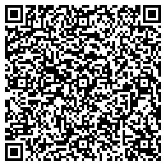 QR-код с контактной информацией организации Общество с ограниченной ответственностью OOO VSI