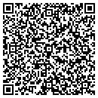 QR-код с контактной информацией организации Мегаполис,ИП