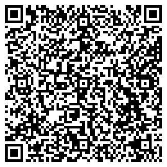 QR-код с контактной информацией организации Другая Alogic