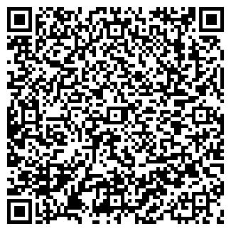 QR-код с контактной информацией организации Субъект предпринимательской деятельности IП АЛарМіка