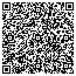 QR-код с контактной информацией организации Субъект предпринимательской деятельности Техносервис