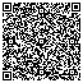 QR-код с контактной информацией организации Dibosh