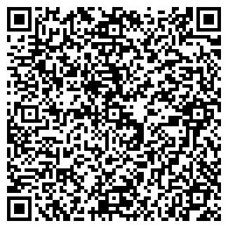 QR-код с контактной информацией организации «Светлана»
