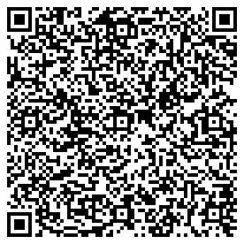 QR-код с контактной информацией организации Студия Т., ИП