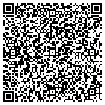 QR-код с контактной информацией организации Emisy (Эмиси), ИП