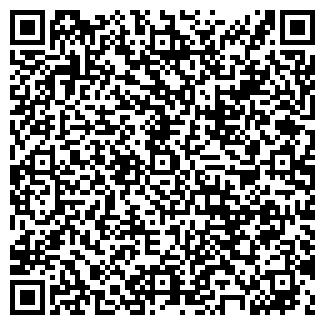 QR-код с контактной информацией организации ип Мишагин