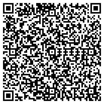 QR-код с контактной информацией организации Армис, Частное предприятие