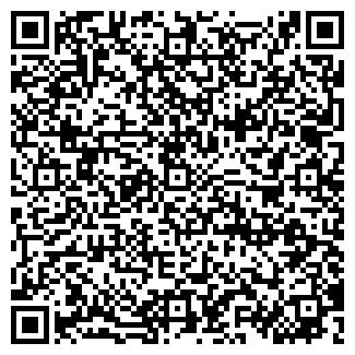 QR-код с контактной информацией организации Cat-design