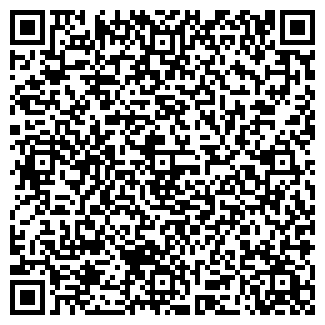 """QR-код с контактной информацией организации ИП """"Ensemble"""""""