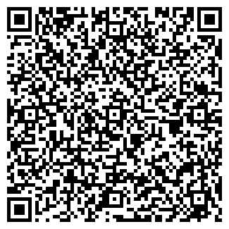 QR-код с контактной информацией организации ИП Борисов