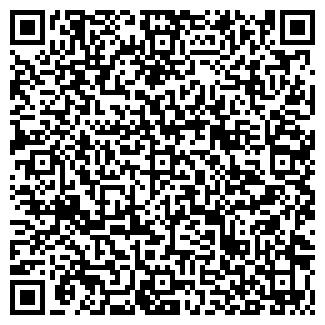 QR-код с контактной информацией организации ЛМ И КО