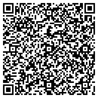 QR-код с контактной информацией организации Geimer