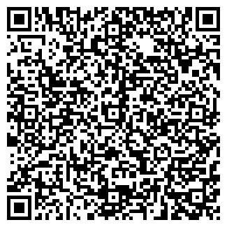 QR-код с контактной информацией организации ИП Пунтус Р. Р.