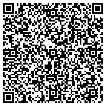 QR-код с контактной информацией организации LionStyle, ЧП
