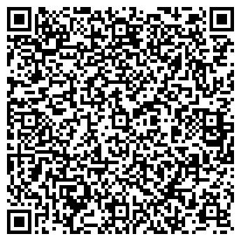 QR-код с контактной информацией организации OOO «DMS Solutions»
