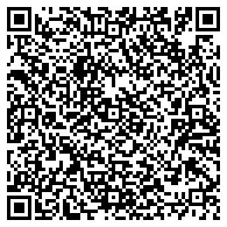 QR-код с контактной информацией организации Иконсайт, ООО