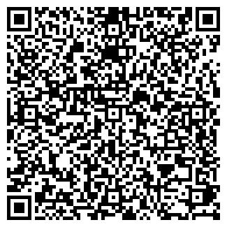 QR-код с контактной информацией организации Genesis Company (Генесис Компани), ИП