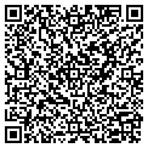 QR-код с контактной информацией организации АЛЬФАМЕТИЗГРУПП
