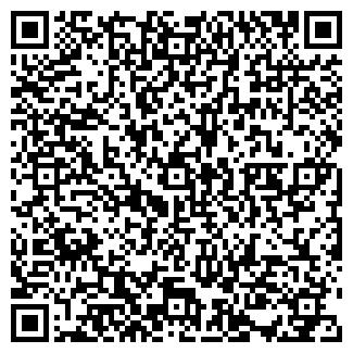 QR-код с контактной информацией организации Сайт про сайт
