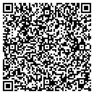 QR-код с контактной информацией организации Общество с ограниченной ответственностью TEAM