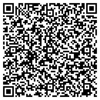 QR-код с контактной информацией организации Субъект предпринимательской деятельности ИП Николай