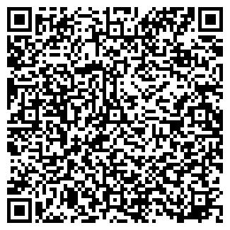 """QR-код с контактной информацией организации """"Galaktik"""""""