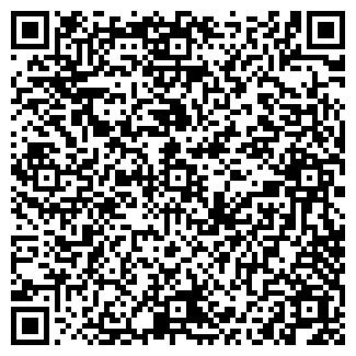 QR-код с контактной информацией организации Субъект предпринимательской деятельности АЛЯ-Кредит