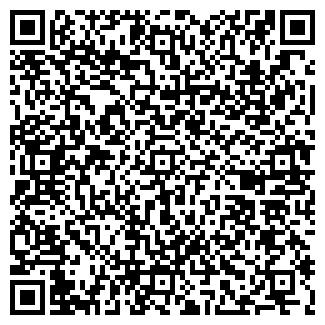 QR-код с контактной информацией организации cкрипач