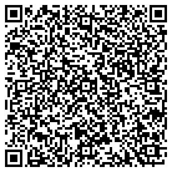 QR-код с контактной информацией организации Sky Service, ООО