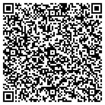 """QR-код с контактной информацией организации ИП """"Киностудия Динара"""""""