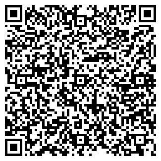 QR-код с контактной информацией организации ИП «STN»