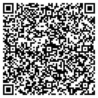 QR-код с контактной информацией организации ЧП ШИШКА