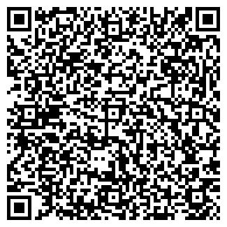 QR-код с контактной информацией организации Субъект предпринимательской деятельности ИП Швецов