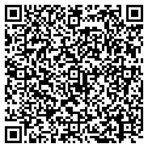 QR-код с контактной информацией организации Шоу Театр Домино