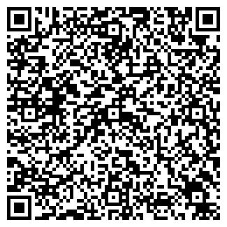 QR-код с контактной информацией организации Аэро шар, ЧП