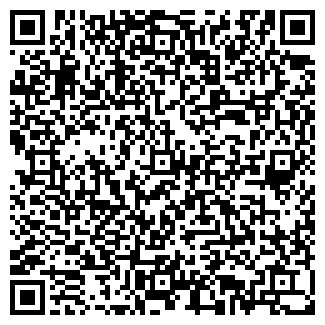 QR-код с контактной информацией организации sharik-smile