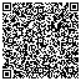 QR-код с контактной информацией организации Семицветик, ЧП